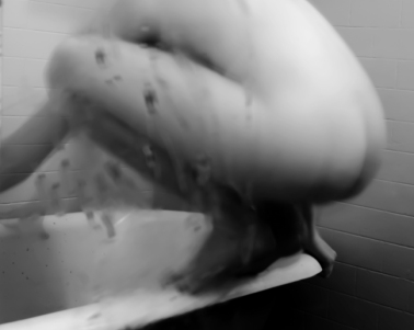 "Doppelgänger - Digital Inkjet, mounted on aluminum, 43.5 x 34"", 2013 - © grace sippy 2017"