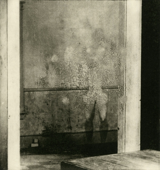 """Quiet Fear v.II - Photopolymer Intaglio and Chine-Collé, 15 x 18"""", 2016 - © grace sippy 2018"""