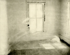 """Window Cloak v.III - Photopolymer Intaglio and Chine-Collé, 20 x 15"""", 2016 - © grace sippy 2018"""